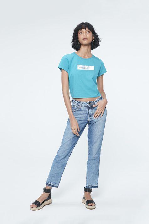 Camiseta-com-Estampa-Vim-Vivi-e-Esqueci-Detalhe1--
